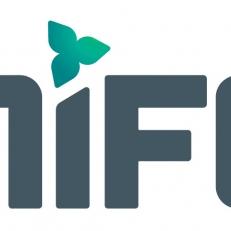 Des activités en ligne au Mifo