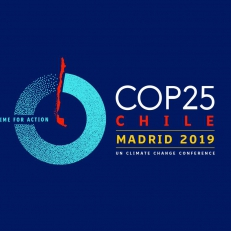"""""""COP de la honte"""" :  la COP25 débouche sur un accord décevant"""