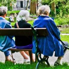 Forum du Conseil sur le vieillissement d\