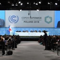 COP 24