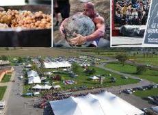 Le Festival de la Bine