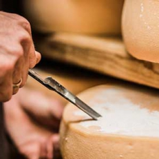 Programme pour fromagers