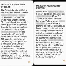 Le français malmené dans une alerte Amber