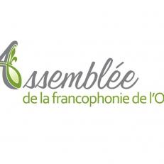 ''Livre blanc sur les arts et la culture francophones en Ontario''