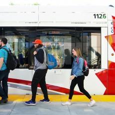 Les wagons du train léger n'aiment pas le temps froid, selon les experts engagés par la Ligne de Transport Rideau
