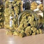À une étape de la légalisation de la marijuana